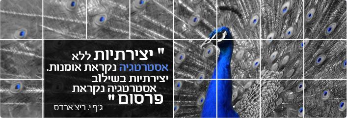 עיצוב תמונה לאתר ריקלמה